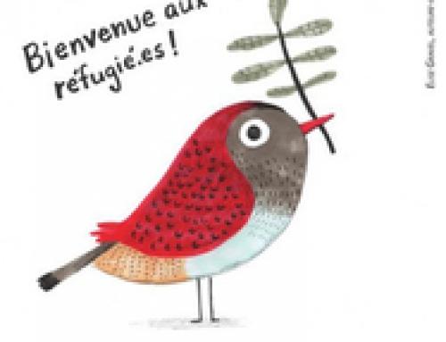 Audience scolarisation des MNA à l'Inspection Académique du Finistère